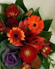Geberas, lilies,freesia, roses and kale this high contrast bouquet is good for anyone who likes rich passionate colours.