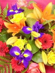 Bright seasonal bouquet.Reds Yellows blues and oranges.