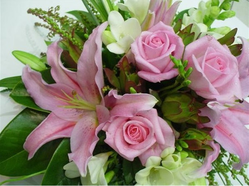 A graceful, bright bunch of fresh cut flowers in white and pink.