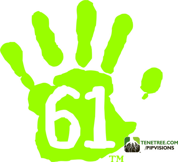 Pipvisions 561 Stickers Safety Green