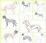 Dog Breeds Set 2 Line Art Set MACHINE EMBROIDERY DESIGN 4X4, 5X7 & 6X10