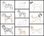 Dog Breeds Set 3 Line Art Set MACHINE EMBROIDERY DESIGN 4X4, 5X7 & 6X10