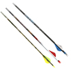 carbon-arrows-503pic1.jpg