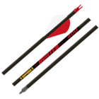 Gold Tip Hunter - 340 - 2in Raptor Vanes - 1/2dz