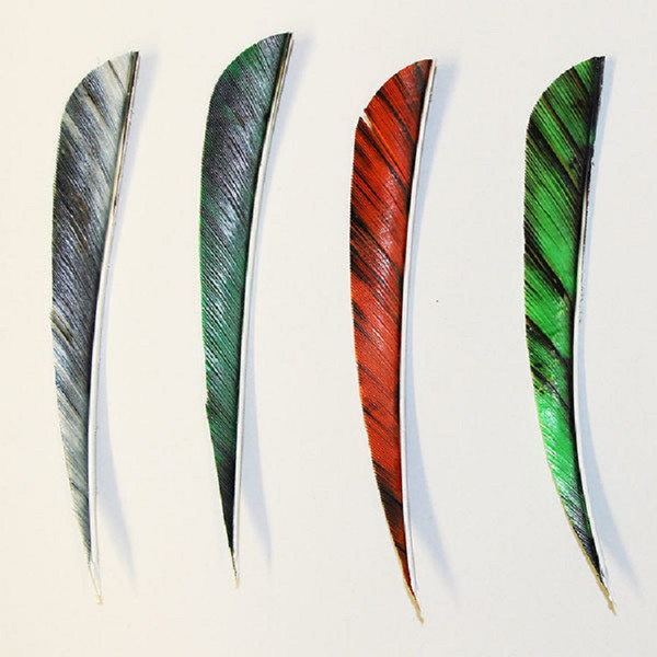 "Muddy Buck Gear 5"" Parabolic RW Feathers - 36 Pack (Camo Hunter Green)"