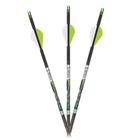"Carbon Express PileDriver 350 DS Hunter Arrows w/ 2"" Vanes - 6pk"