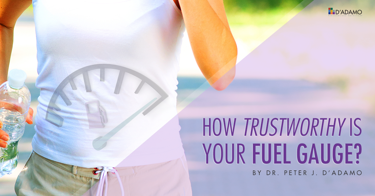 How Trustworthy is Your Fuel Gauge