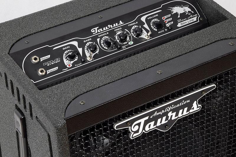 Taurus Amplification - TS-10 HC - 350W RMS Slim Line Bass Combo With 1X10 Neodymium Speaker