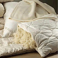 Pillow (Purists 95% Feather / 5% Down) by SDH