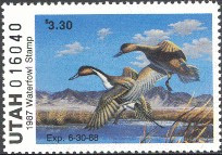 Utah Duck Stamp 1987 Pintail