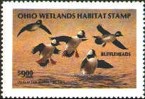 Ohio Duck Stamp 1993 Buffleheads