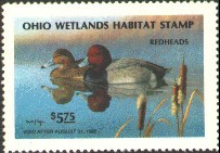 Ohio Duck Stamp 1985 Redheads