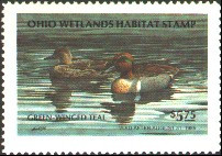 Ohio Duck Stamp 1984 Green - Winged Teal
