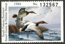 North Dakota Duck Stamp 1984 Canvasbacks Hunter type with serial number