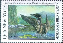 New York Duck Stamp 1996 Loon