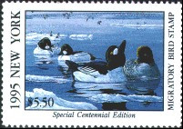 New York Duck Stamp 1995 Goldeneye