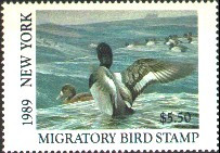 New York Duck Stamp 1989 Greater Scaup
