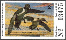 Nevada Duck Stamp 1984 Pintails