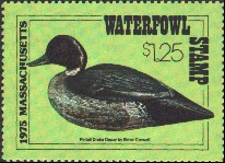 Massachusetts Duck Stamp 1975 Pintail Stamp portrays decoy