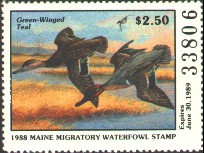 Maine Duck Stamp 1988 Green - Winged Teal