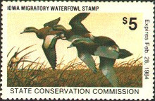 Iowa Duck Stamp 1983 American Wigeon