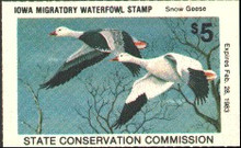 Iowa Duck Stamp 1982 Snow Geese