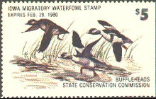 Iowa Duck Stamp 1979 Buffleheads