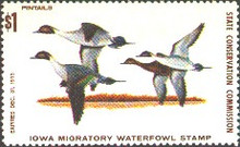 Iowa Duck Stamp 1973 Pintails