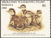 Indiana Duck Stamp 1980 Mallard Duckings