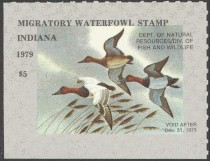 Indiana Duck Stamp 1979 Canvasbacks