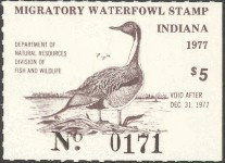 Indiana Duck Stamp 1977 Pintail
