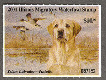 Illinois Duck Stamp 2001 Yellow Lab / Pintails