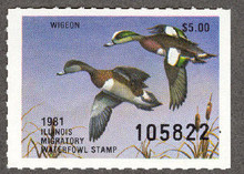 Illinois Duck Stamp 1981 American Wigeon