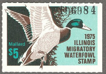 Illinois Duck Stamp 1975 Mallard