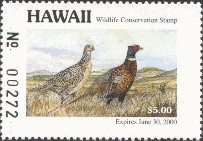Hawaii Duck Stamp 1999 Ring - Necked Pheasant