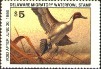 Delaware Duck Stamp 1985 Pintail