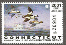 Connecticut Duck Stamp 2001 Buffleheads Hunter type (Serial # H)