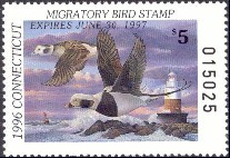 Connecticut Duck Stamp 1996 Old Squaw