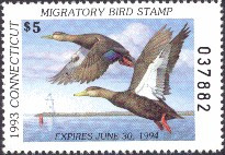 Connecticut Duck Stamp 1993 Black Ducks