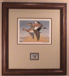 Washington Duck Stamp Print 1989 American Widgeon by Maynard Reece Frame Style B Framed