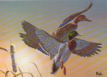 South Carolina Duck Stamp Print 1982 Mallards by Bob Binks