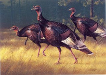 New Mexico Wild Turkey Stamp Print 1986 Wild Turkeys by Daniel Smith