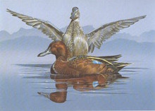 Nevada Duck Stamp Print 1980 Cinnamon Teal by Dick McRill