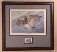 Missouri Duck Stamp Print 1990 Readheads by Eileen Melton Govenor Edition Framed