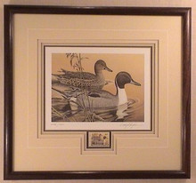 Arkansas Duck Stamp Print 1984 Pintails by Larry Hayden Wenge Wood Frame