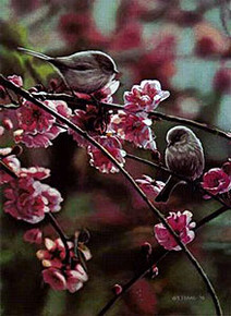 Spring Song by Terry Isaac