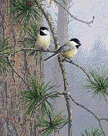 Red Pine and Chickadees by Jim Hautman