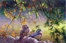 On The Pond - Wood Ducks by Robert Bateman