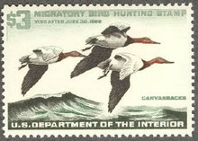 Federal Duck Stamp RW32 ( 1965 Canvasbacks )