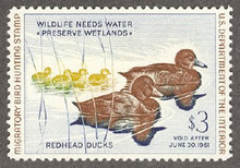 Federal Duck Stamp RW27 ( 1960 Redheads )